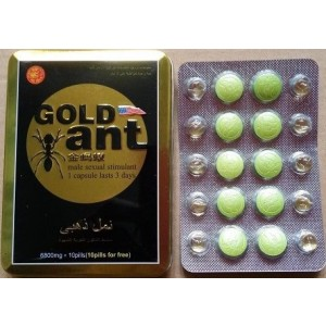 Gold Ant KYSWKYS