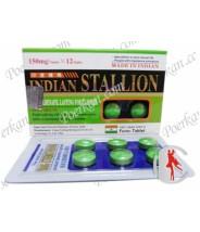 Indian Stallion